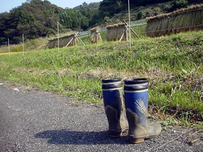 131030_boots.jpg