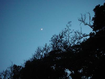 0523_moon.jpg
