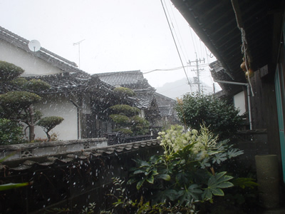 081206_snow.jpg