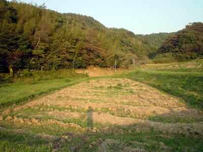091030_jiro.jpg