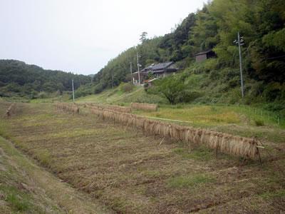 101020_jirosaburo_02.jpg