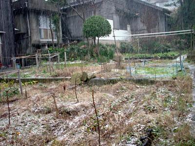 110107_snow02.jpg