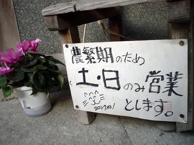 110515_nohanki.jpg