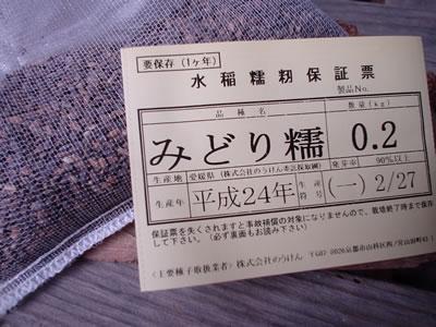 130301_midori.jpg