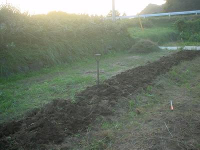 farm_no4.jpg