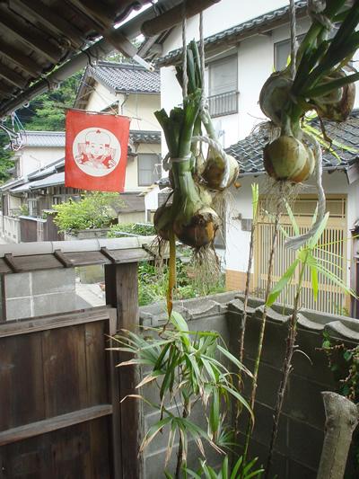 nokitama_02.jpg